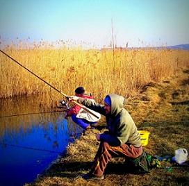 9724_a-szent-laszlo-patak-elfeledett-halai.jpg