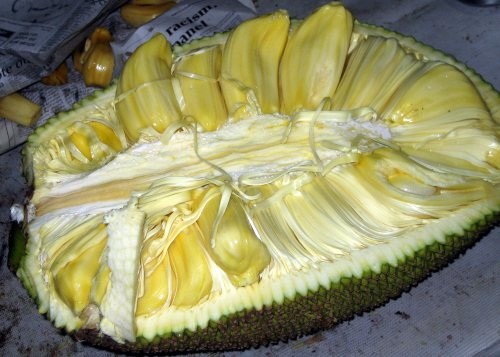 jackfruit-inside.jpg