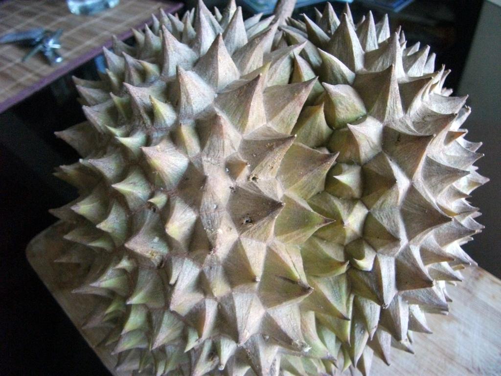 durian3.JPG