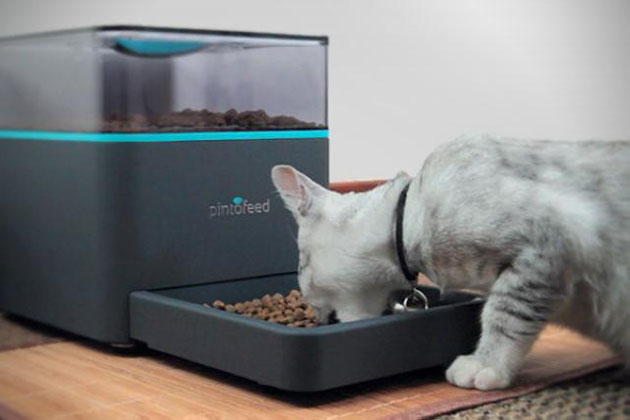 Pintofeed-Automatic-Pet-Feeder-2.jpg