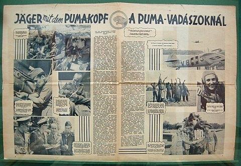 veszpremi-pumak-14.jpg