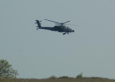 NL-AH-03.jpg