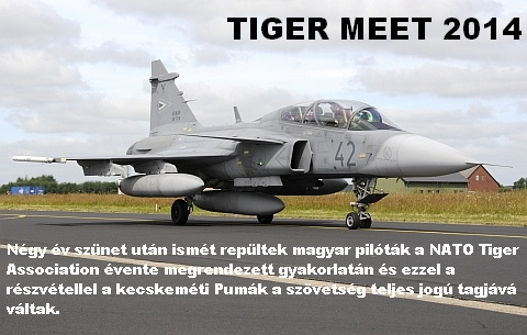 NTM-14-LEAD1.jpg