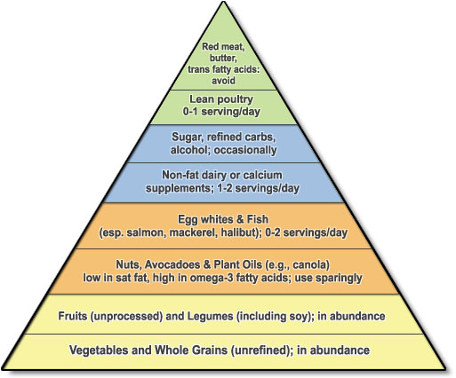 food_pyramid.jpg