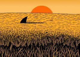 wheat_03.jpg