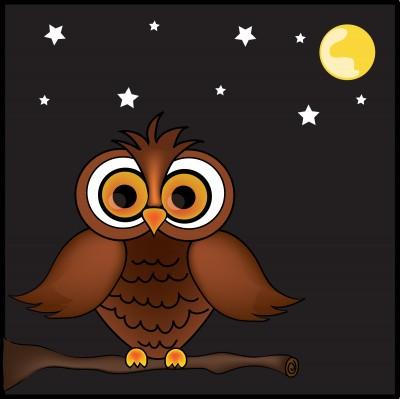 cartoon_owl.jpg