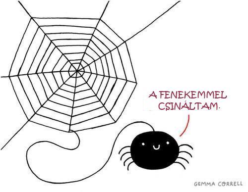 spider_draw.jpg