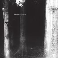 Brambles - Charcoal (200px).jpg