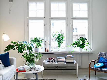 charming-and-clean-style-apartment-window.jpg