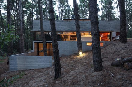casa-levels-house-in-woods-15.jpg