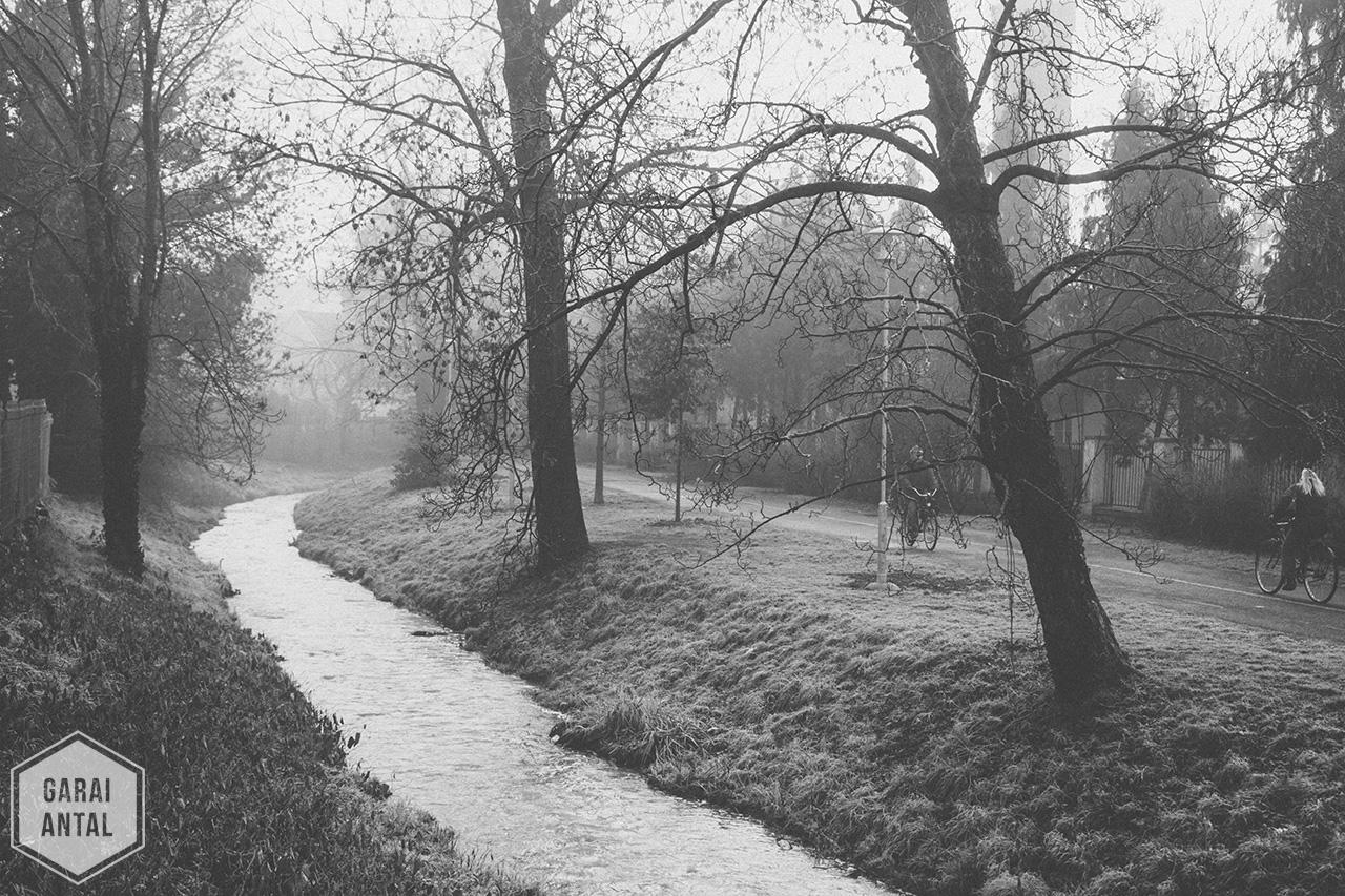 Fekete-Fehér Február 28/12: Reggeli köd