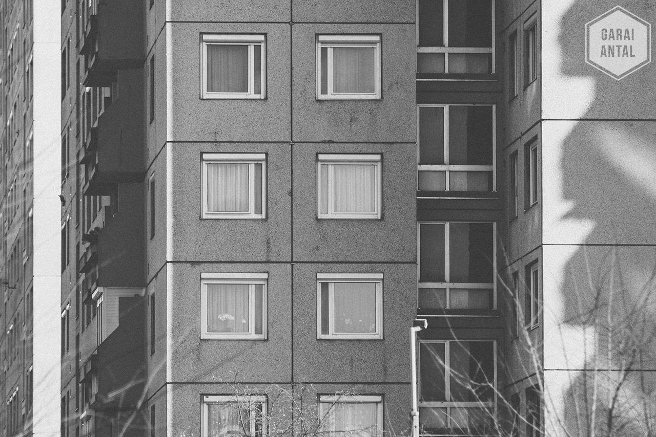 Fekete-Fehér Február 28/13: Panel