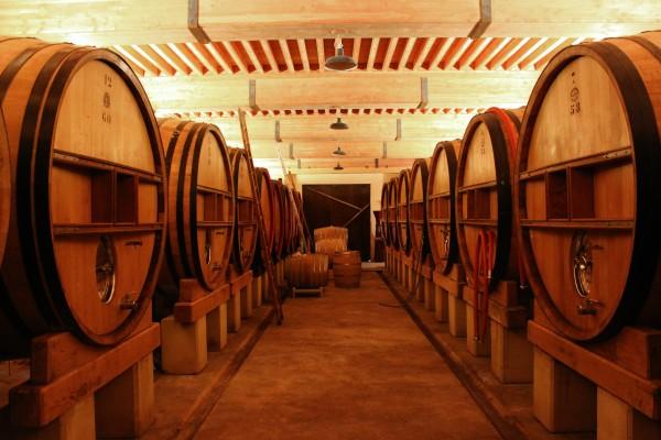 vt_cellar.jpg