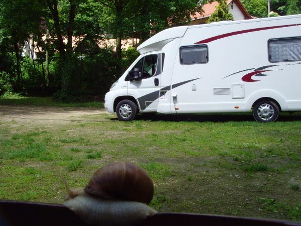 camping_campers.JPG