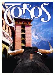 FNSM-cartel-toros-2009-1.jpg