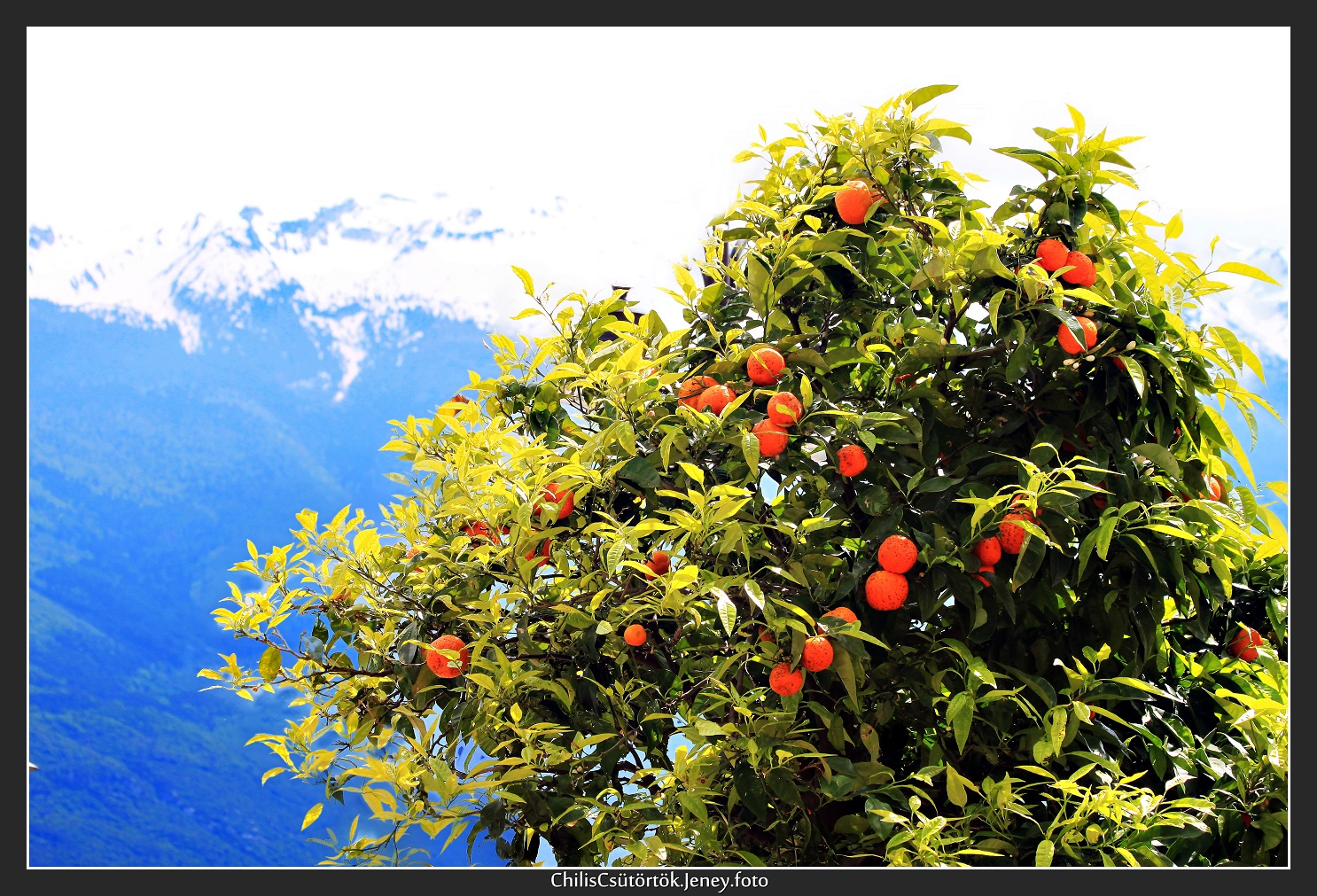 08_limone_sul_garda_2.JPG