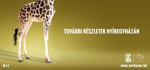 sosto_giraffe_billboard_600.jpg