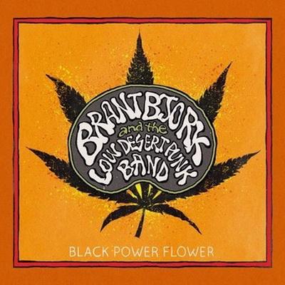 1415955668_black-power-flower.jpg