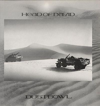 Head-Of-David-Dustbowl-388308.jpg