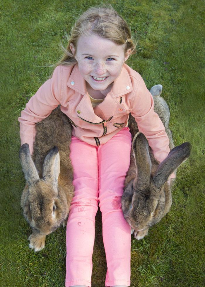 worlds-largest-rabbit-darius-jeff-5.jpg