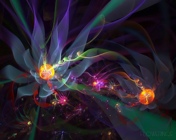 Abstraction-blossom-flower-fractal.jpg