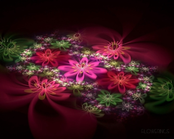 Abstraction-fractal-flowers-pink.jpg