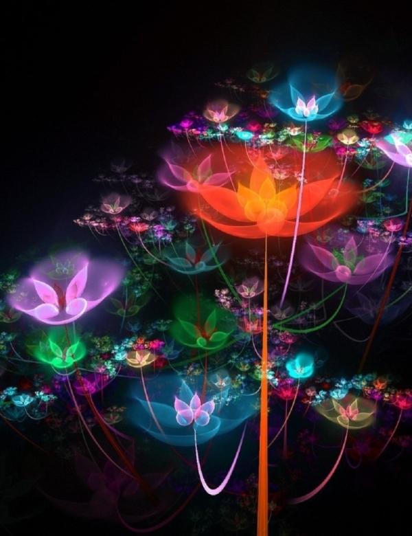 Fractal-flowers-buds-colorful.jpg