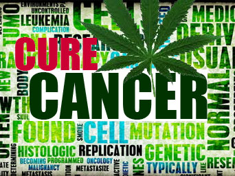 cure-cancer.jpg