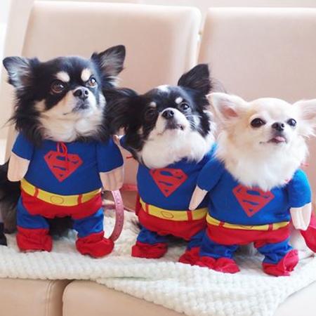 superman_1.jpg