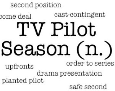 pilotglossary120201111024.jpg