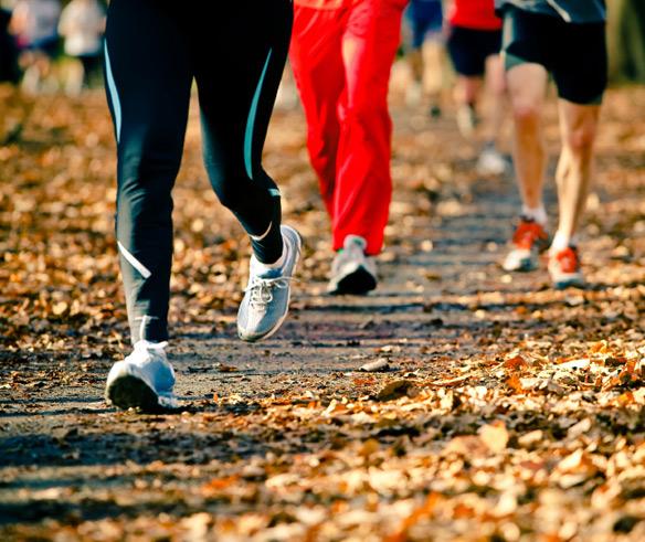 fall_running.jpg