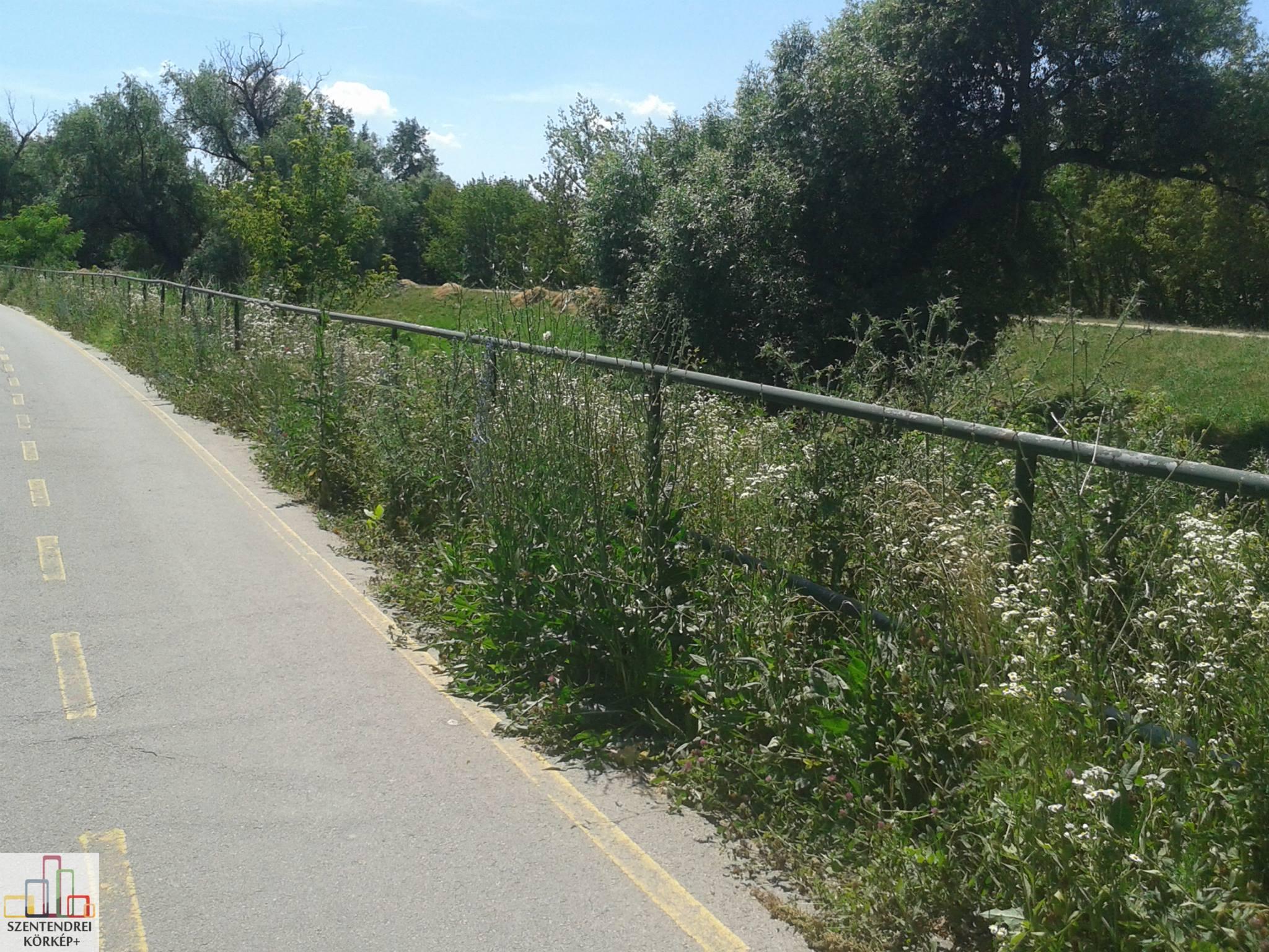 Így néz ki az Eurovelo 6 kerékpárút Postás strand és Városkapu közötti szakasza