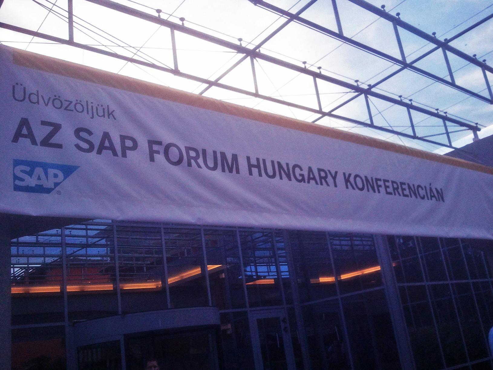 SAP_1.jpg