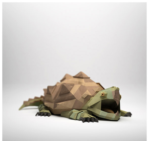 teknős.jpg