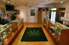 marihuana_shop.jpg