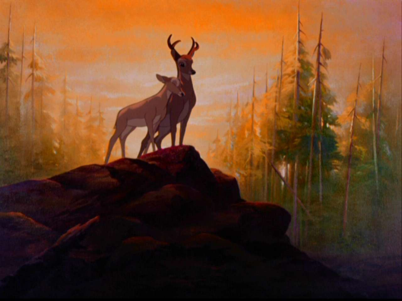 Bambi-bambi-5797378-1280-960.jpg