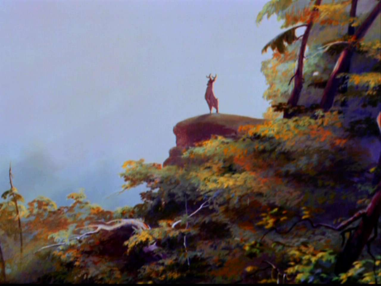 Bambi-bambi-5798134-1280-960.jpg