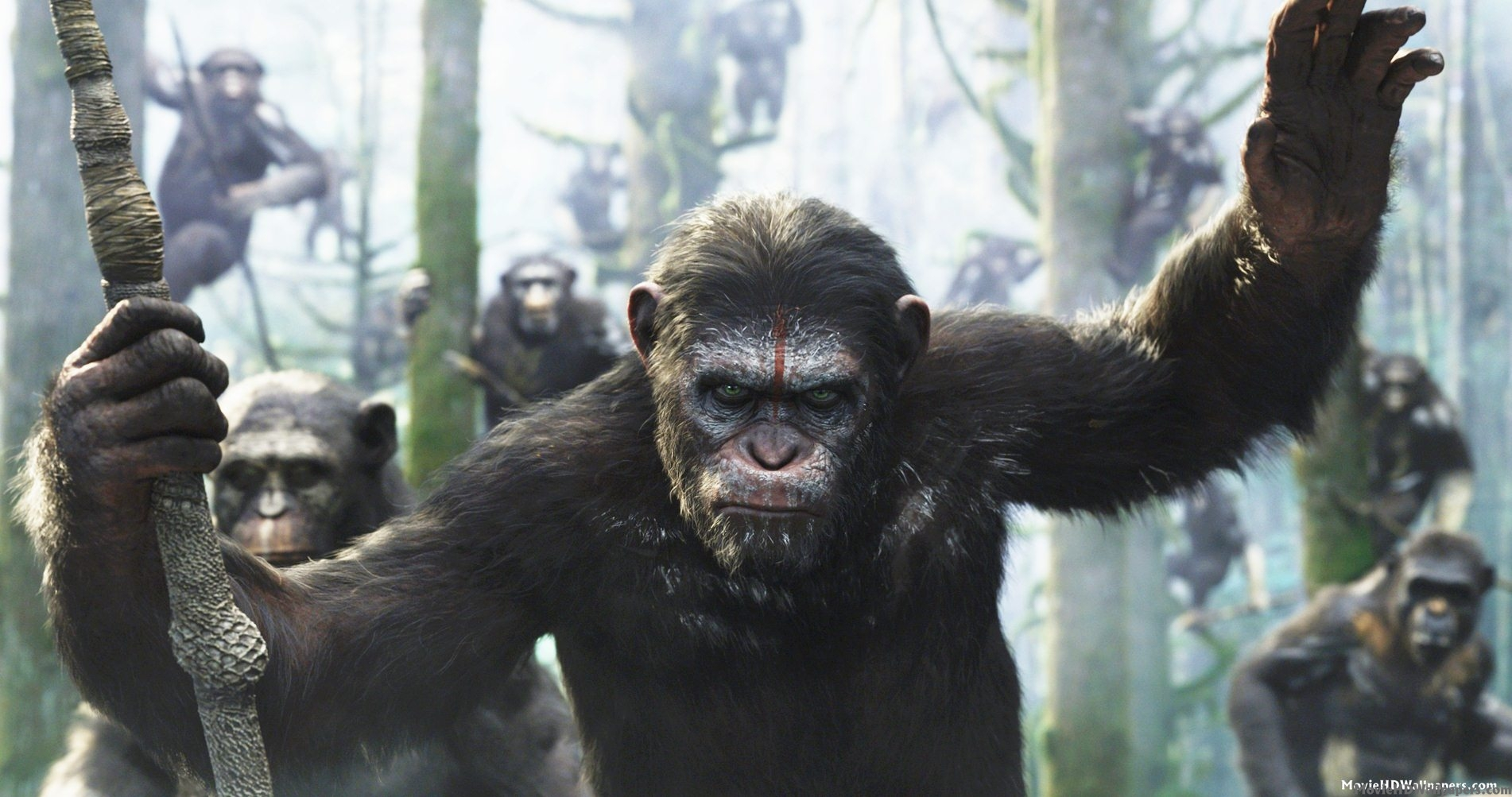 Dawn-of-the-Planet-of-the-Apes-Wallpaper.jpg