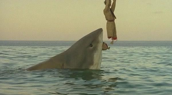 utolsó cápa1.jpg