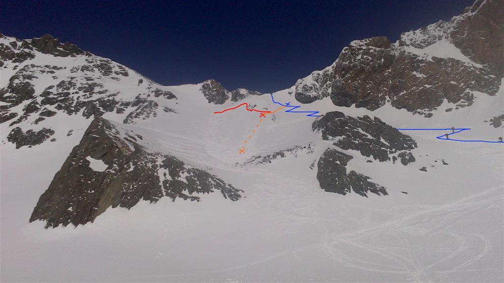 lavina (Large).jpg