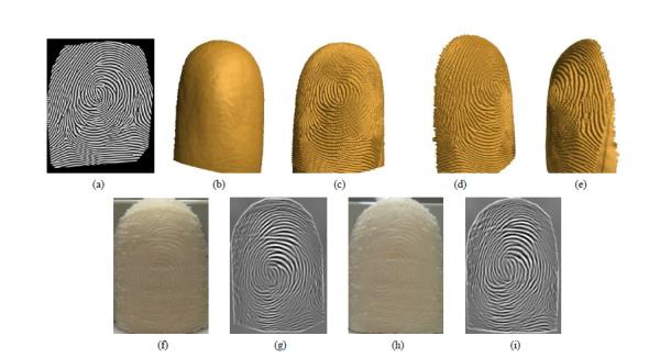 fingerprint2.jpg