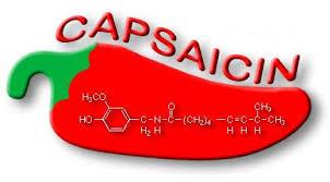 capsaicin.png