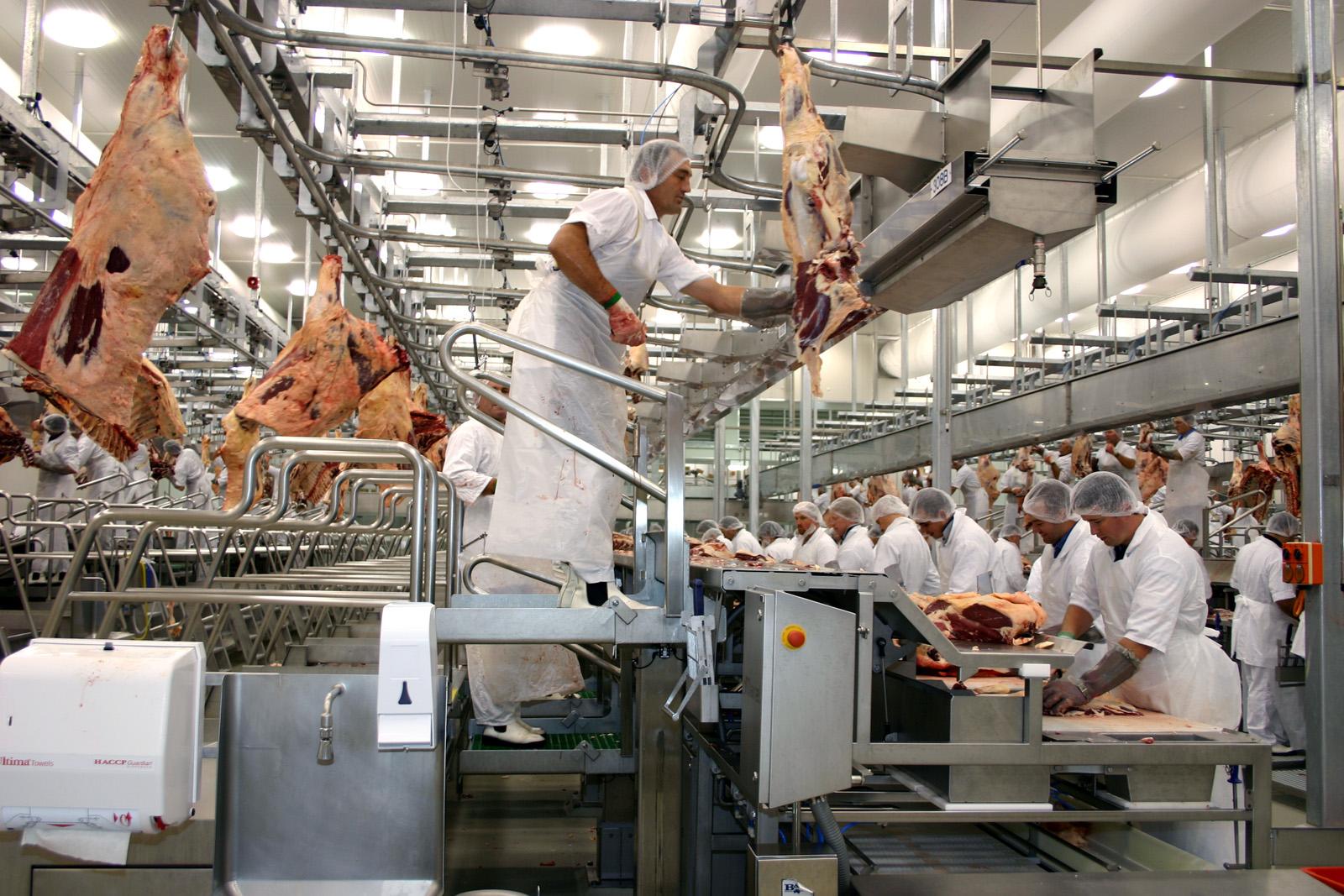 Meat Processing.jpg