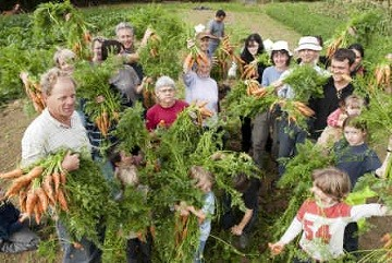 harvest_day-14_0.jpg