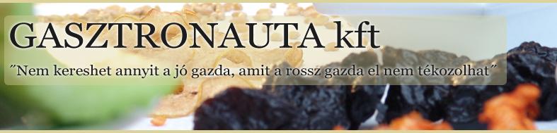 site_fejleckep_gasztronauta_header  VÁGOTT.png