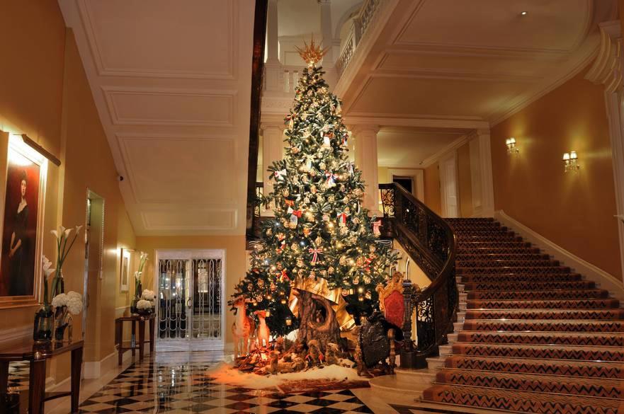 D&G karácsonyfa.jpg