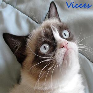 vicces1.jpg