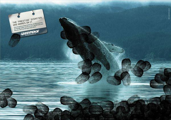 campaign-against-oil-spills-whale-small-30467.jpg