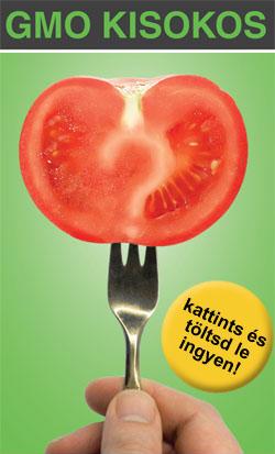 18 GMO_kisokos-banner.jpg