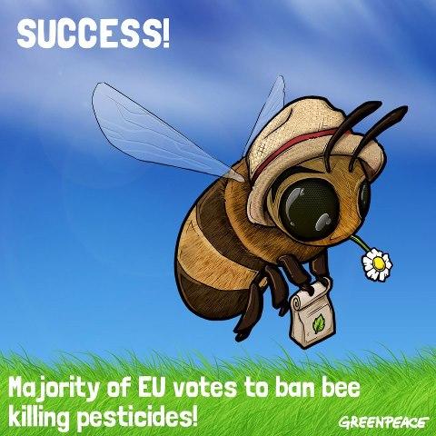 Bee_win.jpg